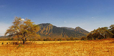 Baluran National Park East Java as the Indonesian African Savanna